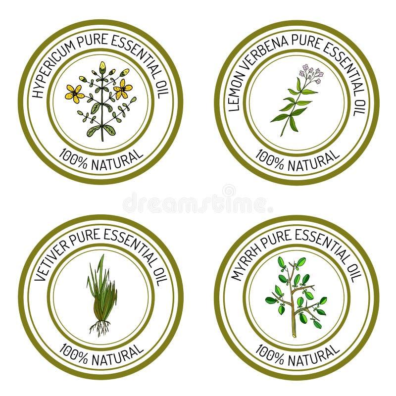 Sistema de etiquetas del aceite esencial: hypericum, verbena del limón, mirra ilustración del vector