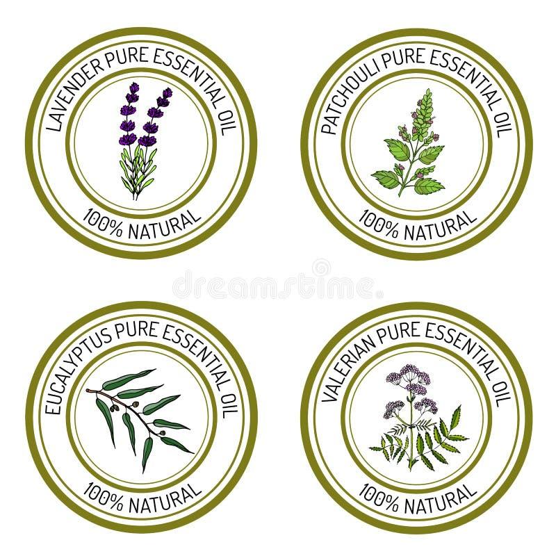 Sistema de etiquetas del aceite esencial: lavanda, patcouli, eucalipto, val libre illustration