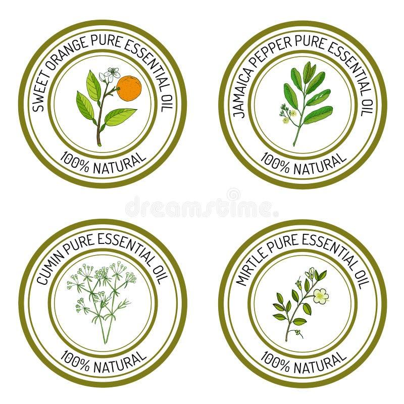 Sistema de etiquetas del aceite esencial: naranja dulce, pimienta de Jamaica, cumun libre illustration