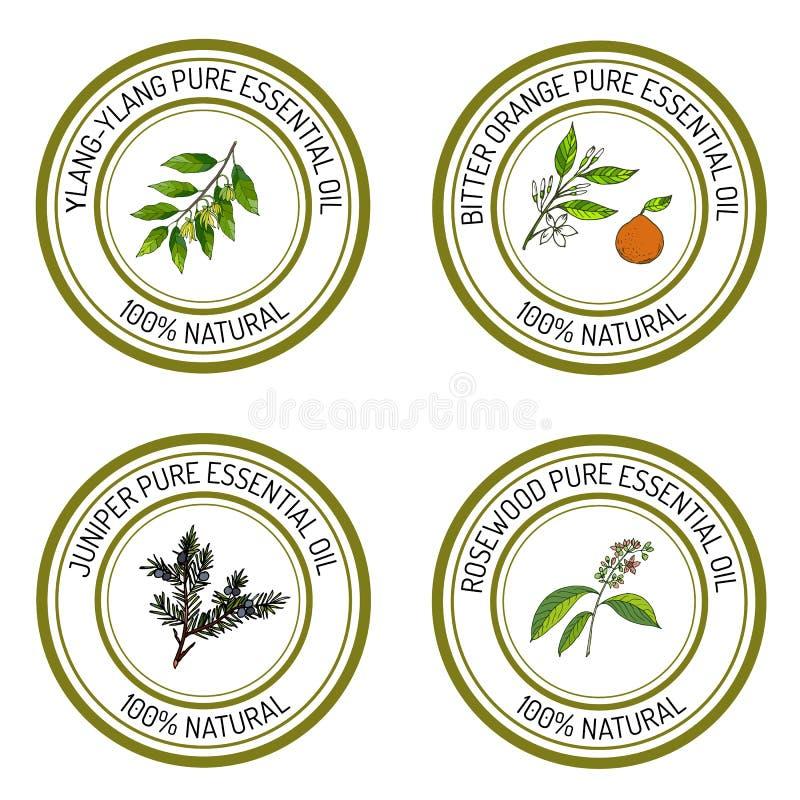 Sistema de etiquetas del aceite esencial: ylang-ylang, enebro, naranja amarga stock de ilustración