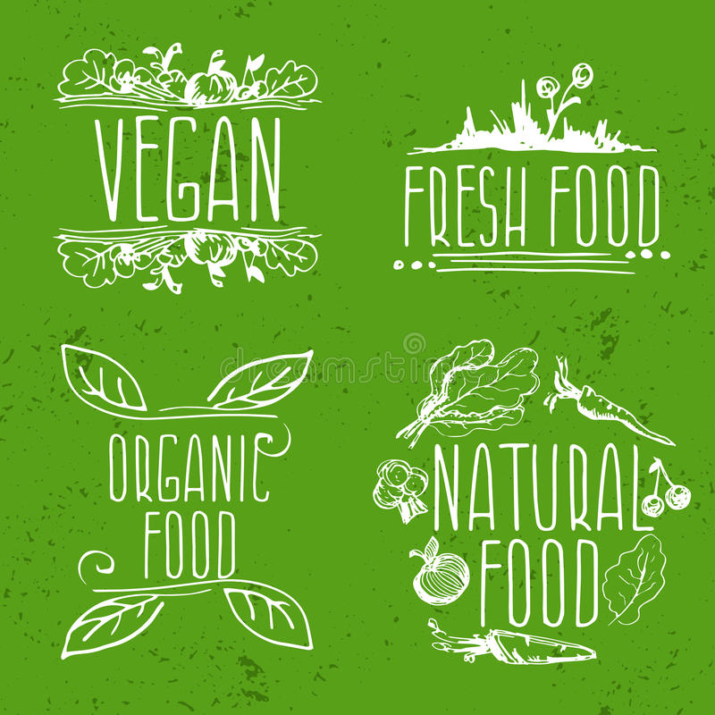 Sistema de etiquetas dibujadas mano del eco frendly Ilustración libre illustration