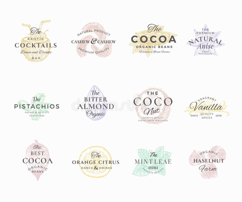 Sistema de etiquetas elegante superior de las nueces, de las frutas y de las especias de Qualituy Muestras, símbolos o Logo Templ ilustración del vector