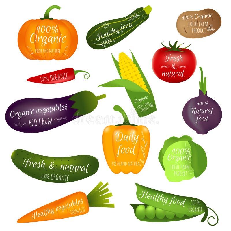 Sistema de etiquetas de las verduras con el texto de la muestra Colección de realista stock de ilustración