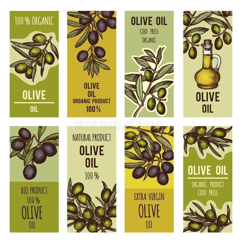 Sistema de etiquetas para las botellas del aceite de oliva Plantilla del diseño del vector para los productos superiores stock de ilustración