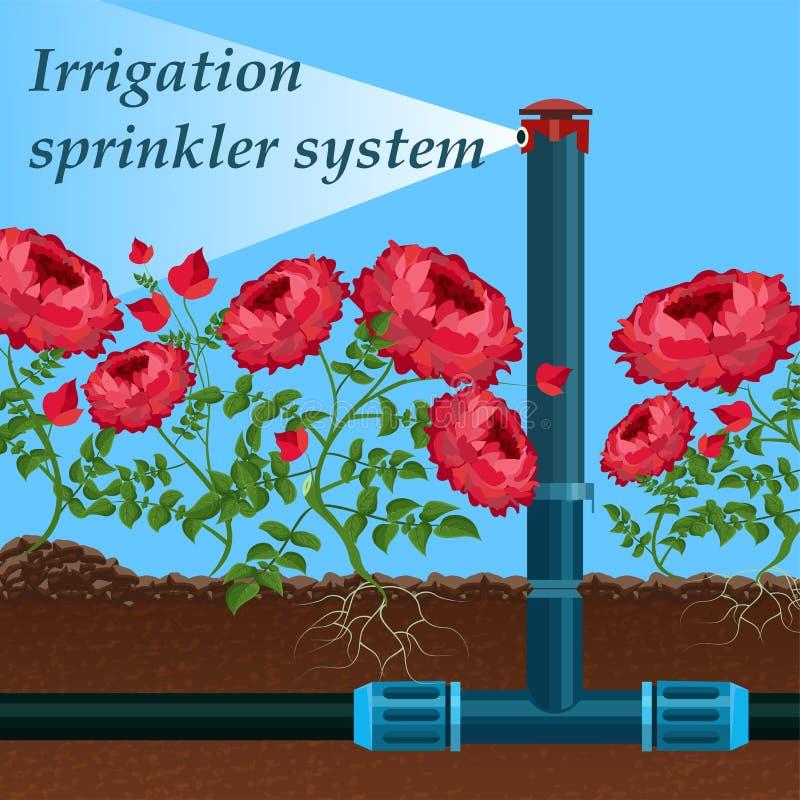 Sistema de sistema de extinção de incêndios da irrigação da inscrição da bandeira ilustração do vetor