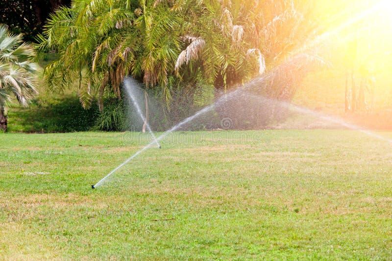 Sistema de sistema de extinção de incêndios que molha o gramado Dia ensolarado do verão foto de stock royalty free