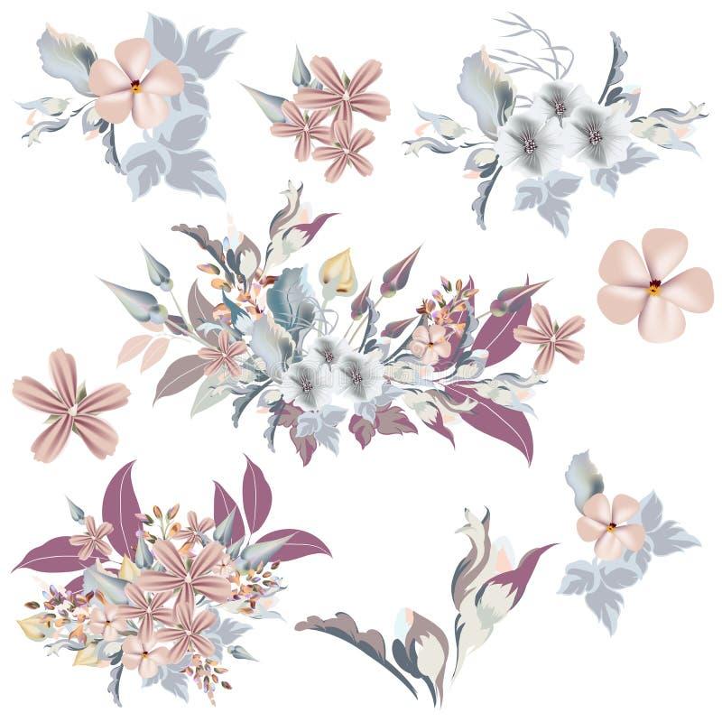 Sistema de flores elegantes del vector en estilo del vintage, ideal para el weddin ilustración del vector