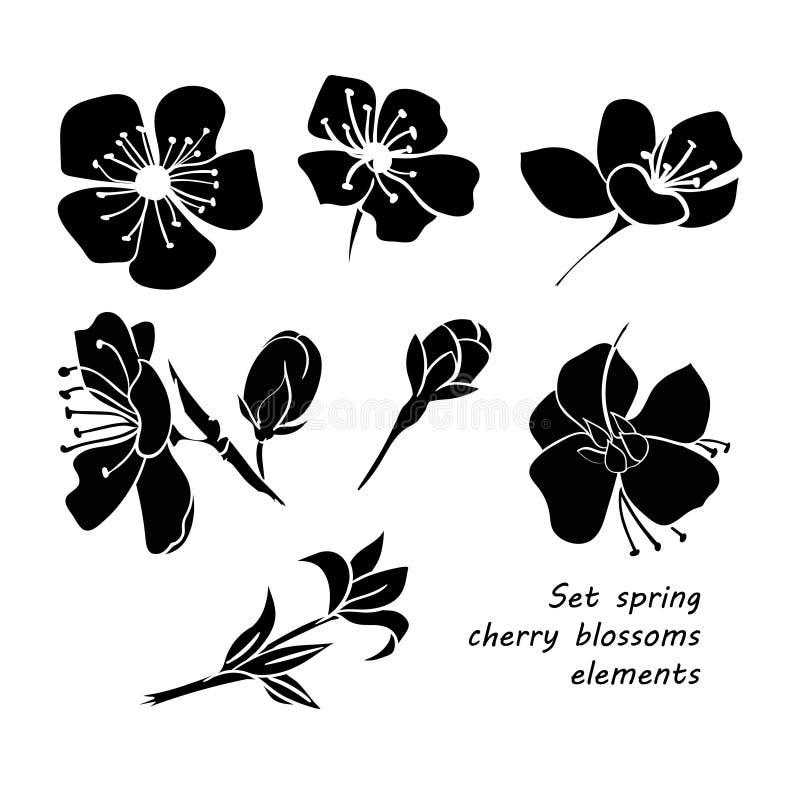 Sistema de flores negras de la flor de cerezo de la primavera de la silueta stock de ilustración