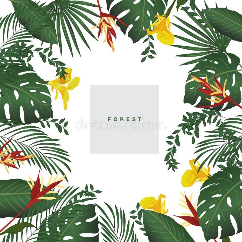 Sistema de flores tropicales estilizadas libre illustration