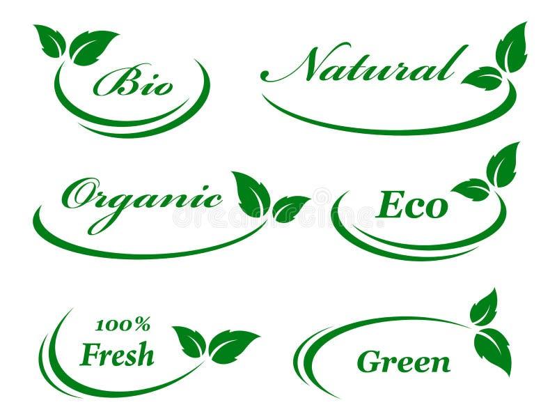 Sistema de fondo con las hojas verdes libre illustration