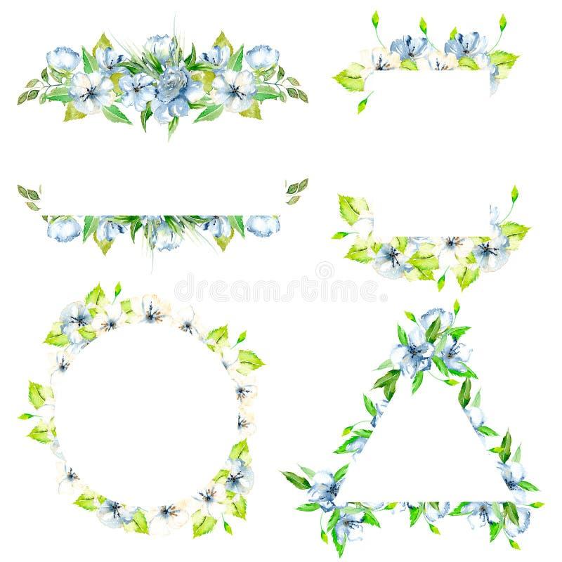 Sistema de fronteras del marco con los wildflowers azules de la acuarela simple y las hojas frescas verdes ilustración del vector