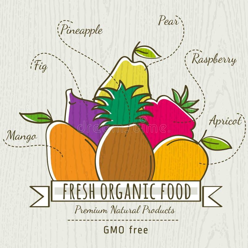 Sistema de frutas orgánicas, vector stock de ilustración
