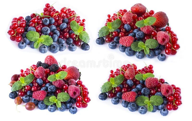 Sistema de frutas y de bayas de la mezcla aisladas en el fondo blanco Pasas rojas, zarzamoras, arándanos, fresas y raspber maduro imágenes de archivo libres de regalías
