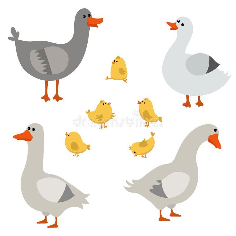 Sistema de gansos lindos libre illustration