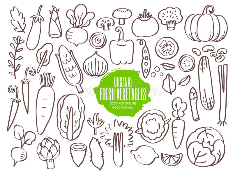 Sistema de garabatos de las verduras ilustración del vector