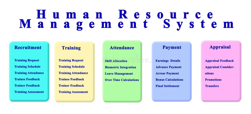 Sistema de gestão dos recursos humanos ilustração do vetor