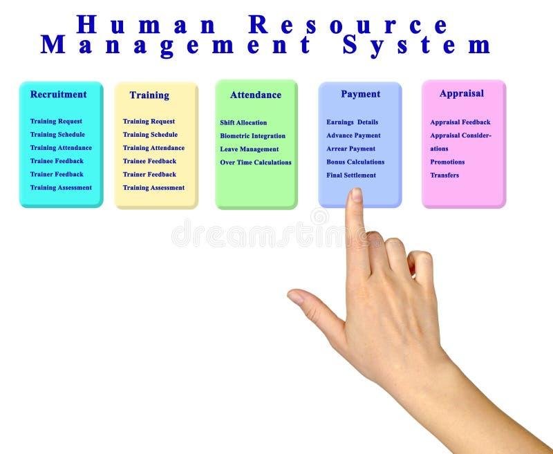 Sistema de gestión de recursos humanos fotografía de archivo