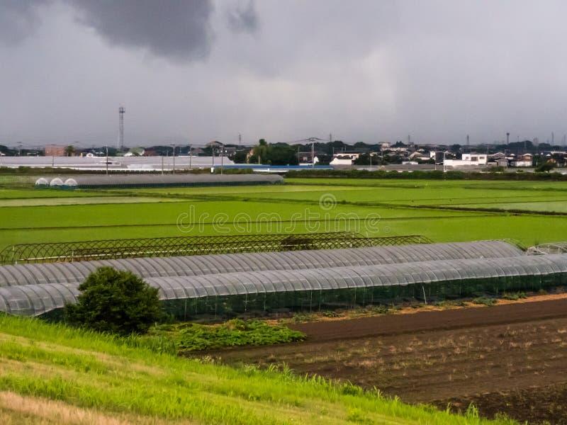 Sistema de granja agrícola en Japón foto de archivo