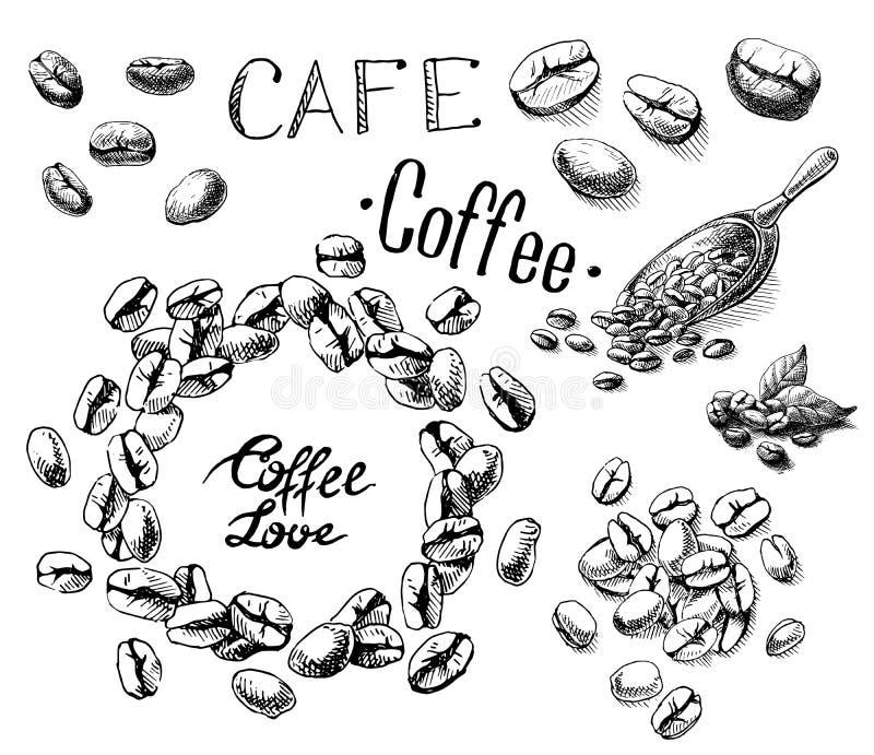 Sistema de granos de café y hojas y cucharada stock de ilustración