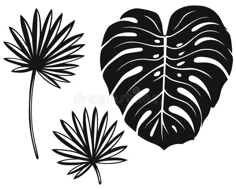 Sistema de hojas de palma stock de ilustración