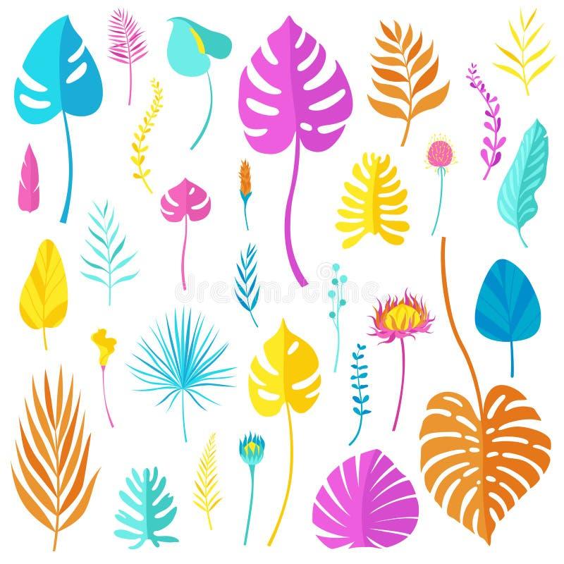 Sistema de hojas, de flores y de hierbas tropicales brillantes coloreadas de los diferentes tipos aislados en el fondo blanco Ilu ilustración del vector