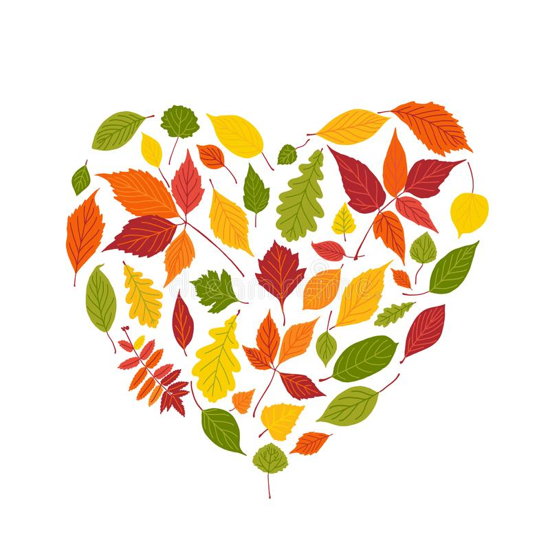 Sistema de hojas de otoño brillantes Marco del terraplén de la forma del corazón de la hoja de la caída aislado en el fondo blanc libre illustration
