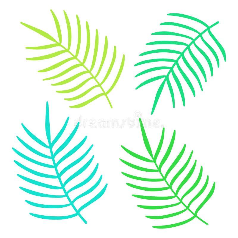 Sistema De Hojas Tropicales Del Verano Colorido Ilustración del ...