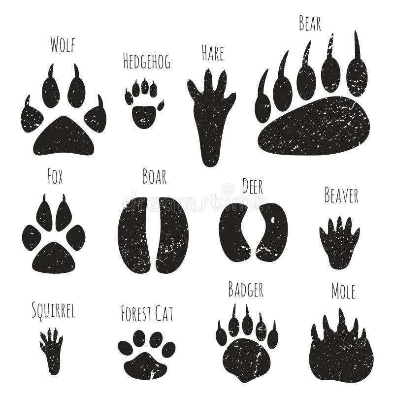 Sistema de huellas de los animales del bosque ilustración del vector