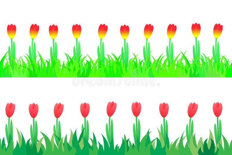 Sistema de inconsútil los tulipanes en la hierba. ilustración del vector