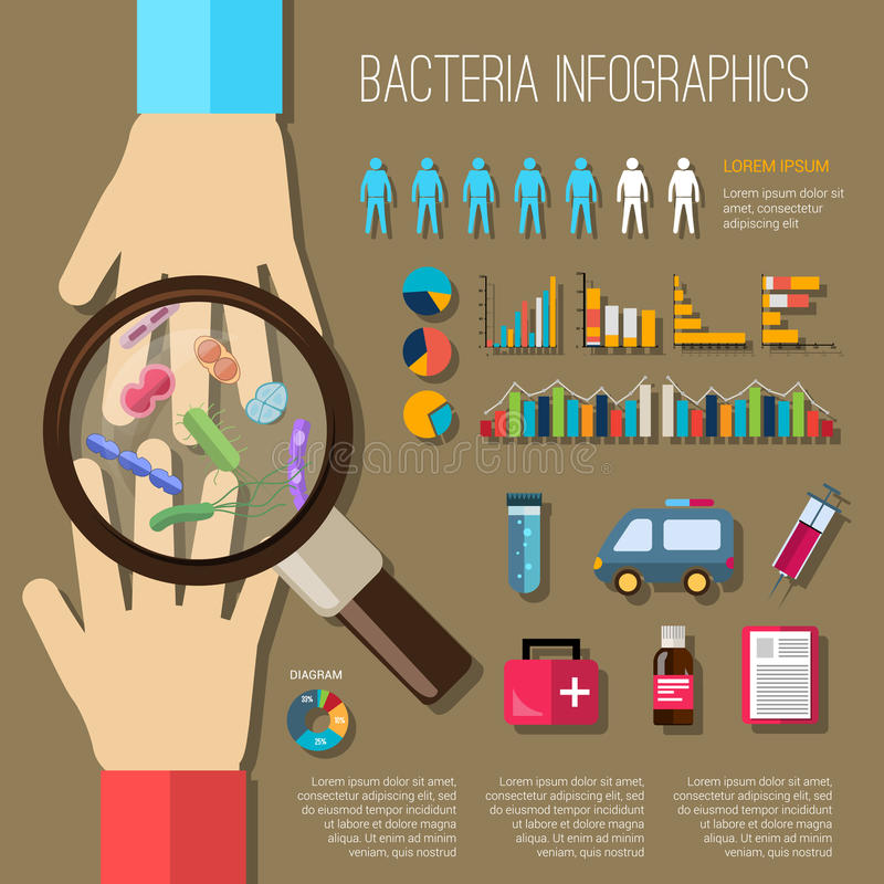 Sistema de Infographics de las bacterias libre illustration