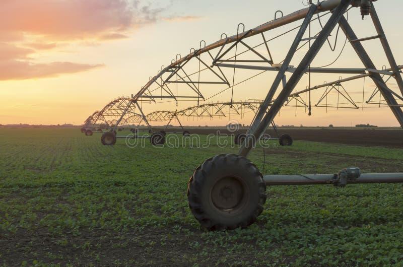 Sistema de irrigação moderno em um campo de exploração agrícola no por do sol fotos de stock