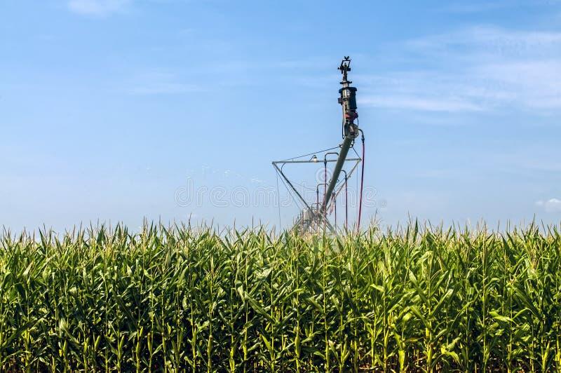 Sistema de irrigación de la cosecha foto de archivo