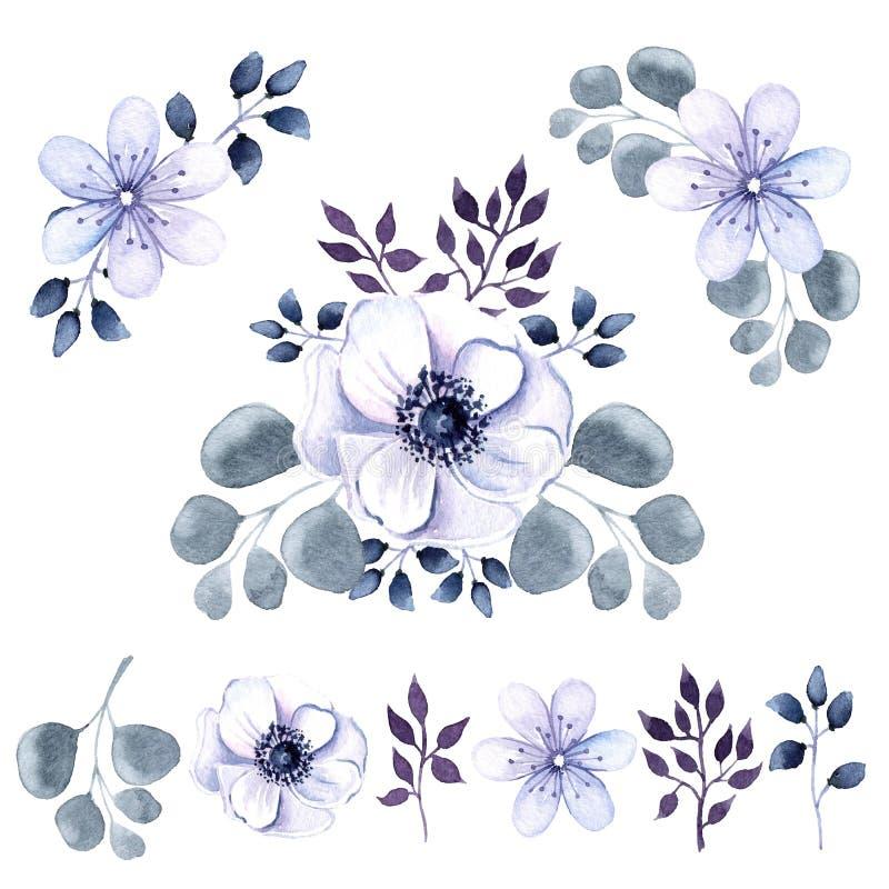 Sistema de la acuarela de flores y de vegetación de la anémona fotos de archivo libres de regalías