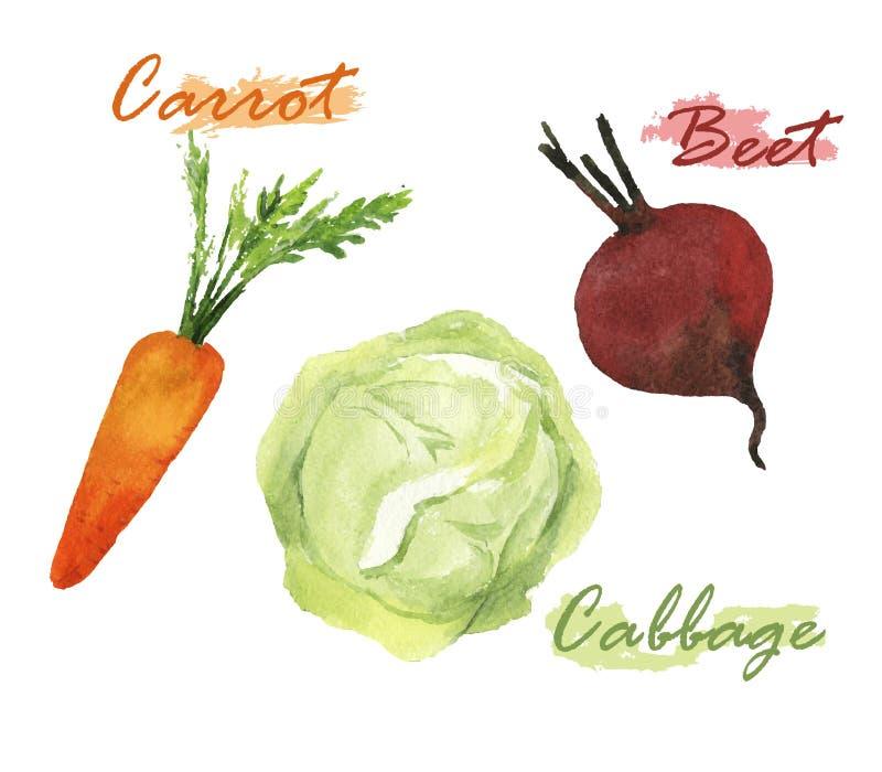 Sistema de la acuarela de las verduras libre illustration