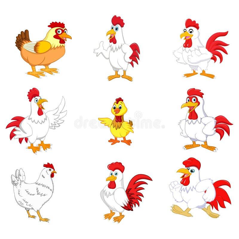Sistema de la colección del gallo de la historieta libre illustration