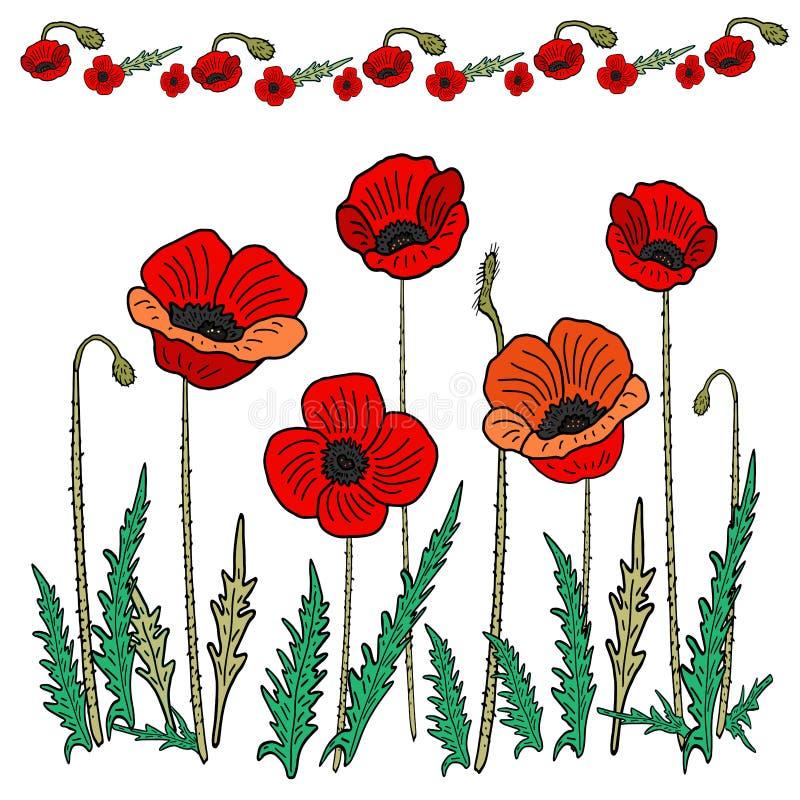 Sistema de la flor de la amapola Ilustraci?n del vector Dibujo de la mano en el estilo de garabatear libre illustration