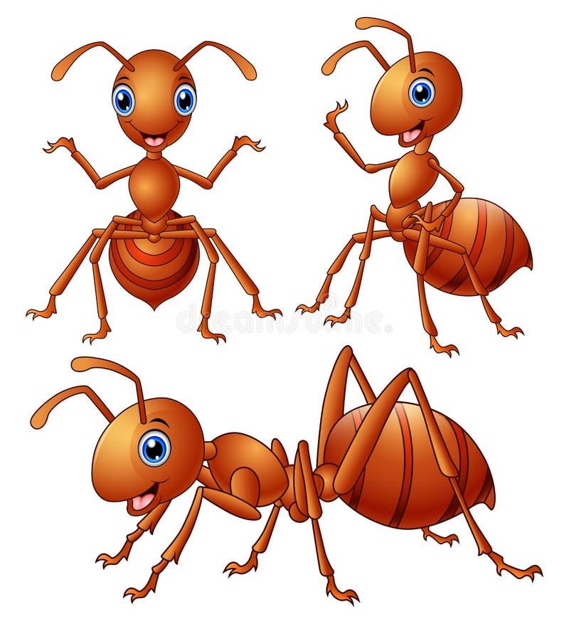 Sistema de la historieta marrón de las hormigas ilustración del vector