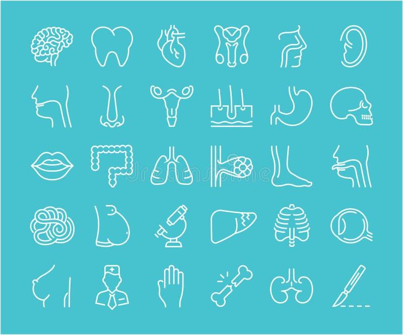 Encantador Anatomía Y Fisiología Conferencias En Línea ...
