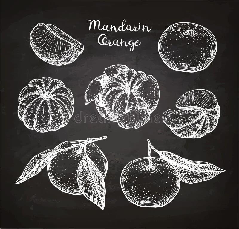 Sistema de la mandarina ilustración del vector