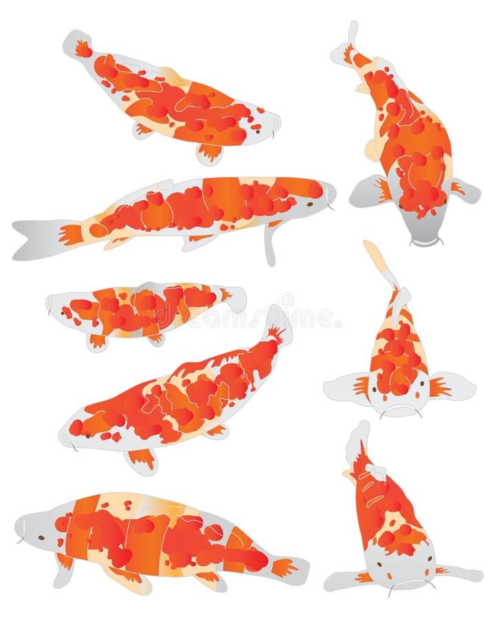 Sistema de la naranja de los pescados de Koi ilustración del vector