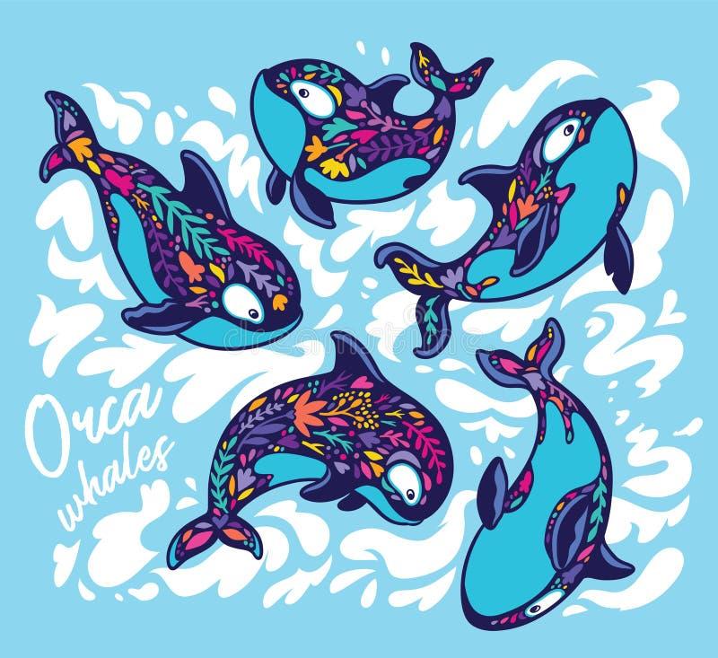 Sistema de la orca de la orca en estilo floral Ilustraci?n decorativa del vector ilustración del vector