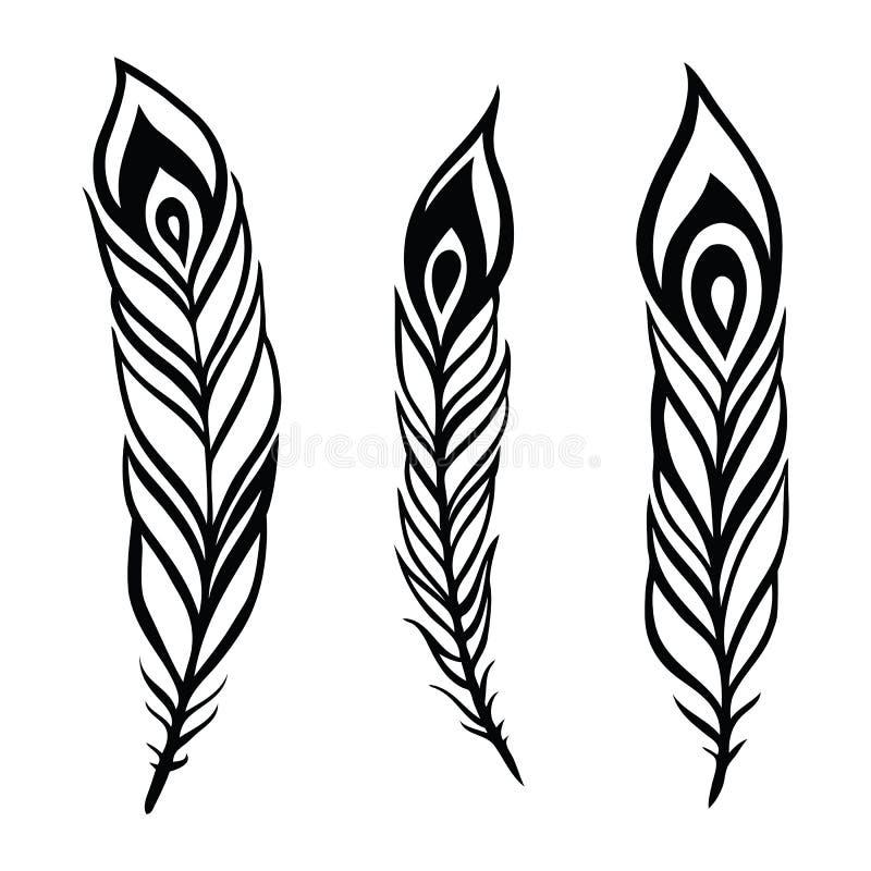 Sistema de la pluma del pavo real. stock de ilustración