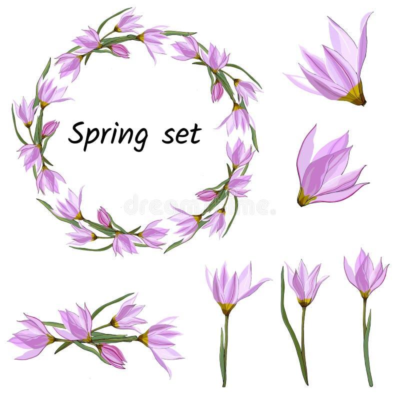 Sistema de la primavera de estampados de flores, de ornamentos y de guirnaldas del vector de las flores rosadas delicadas para ad stock de ilustración
