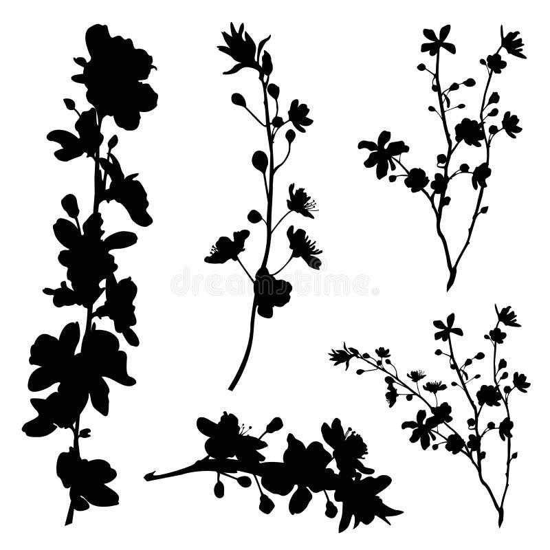 Sistema de la silueta de la rama de la flor de cerezo libre illustration