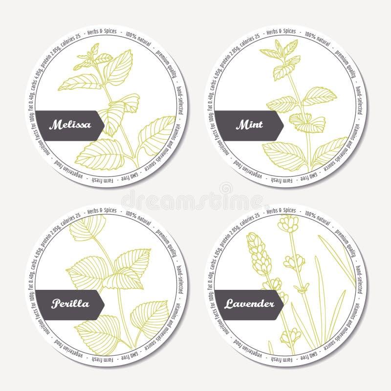 Sistema de las etiquetas engomadas para el withmelissa del diseño de paquete, menta, lavanda, perilla stock de ilustración