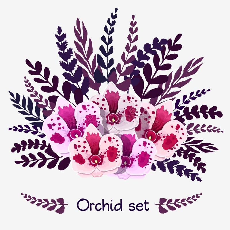 Sistema de las orquídeas y de las hojas blancas de la púrpura Ilustración del vector ilustración del vector