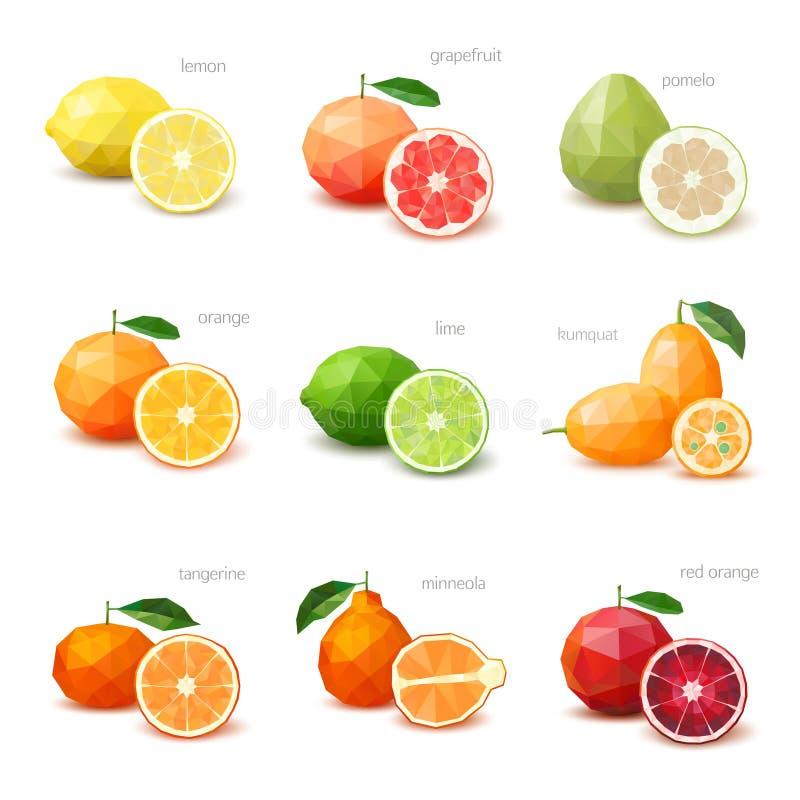 Sistema de los agrios poligonales - limón, pomelo, pomelo, orang foto de archivo
