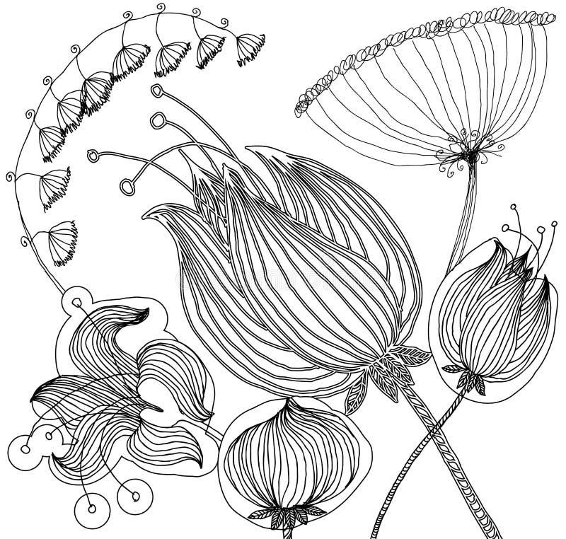 Sistema de los elementos florales del diseño gráfico para el libro de colorear ilustración del vector