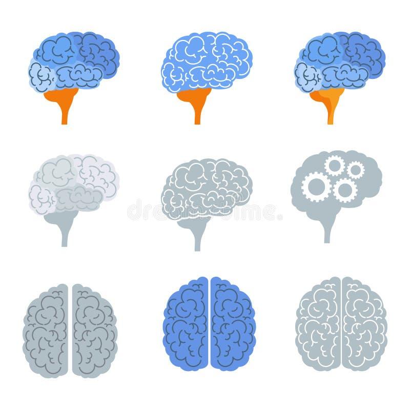 Sistema de los iconos del color del cerebro, visión superior, vista lateral stock de ilustración