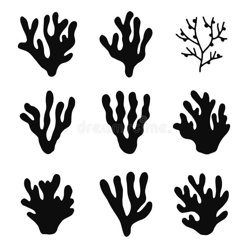 Sistema de los iconos del vector de las siluetas de las algas Objetos aislados libre illustration